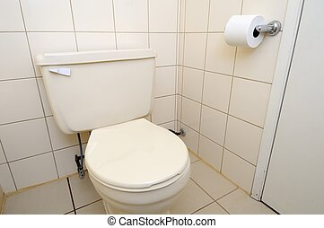 Clean toilet and toilet paper - Interior of clean and...