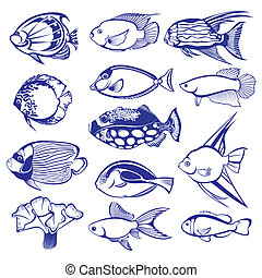 Tropical Fish Set. Raster version. Vector version is in my...
