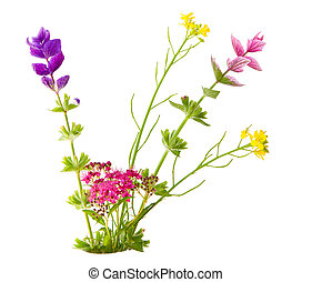 Small flowers - Bundle of small flowers isolated on white...