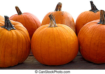Pumpkins - Group of pumpkins isoalted on white background