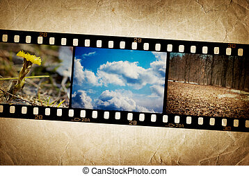Nature photo with film strip on vintage background.