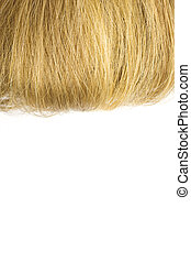 Blonde hair isolated on white background. You can write a...