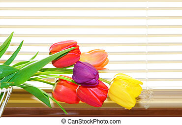 Tulips and Blinds - Tulip flowers on the basket by the...