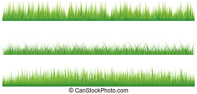 grass - Three set of Grass isolated on white background....