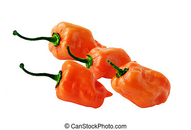 Four Habaneros peppers - Orange habaneros extremely hot...