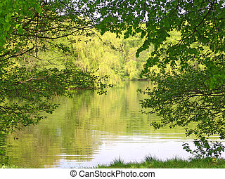 Lake landscape - Beautiful summer green lake landscape...