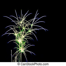 Fire works - Green fireworks in the shape of a palm tree