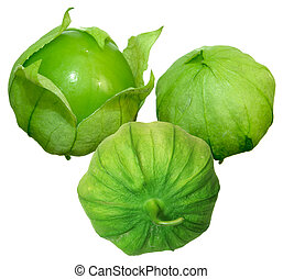 Tomato Tomatillos - Three tomato tomatillos fruits isolated...