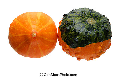 Gourds - Autumn gourds pumpkins isolated on white background
