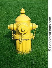 Fire hydrant - Vintage yellow fire hydrant on green grass