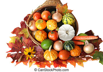 Harvest - Colorful vegetables autumn harvest isolated on...