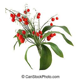 Lily red berry