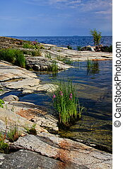 Ladoga lake - the shore