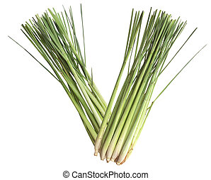 Lemongrass - Fresh lemongrass stems isolated on white...