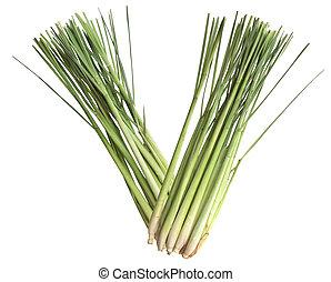 Lemongrass - Fresh lemongrass stems isolated on white...