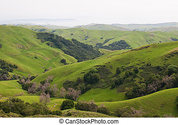 Rolling hills - Rolling Hills and the Pacific Coast near...
