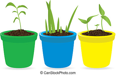 Potted seedling. Vector illustration for you design