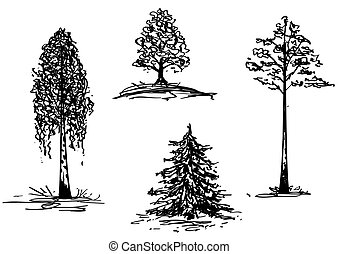 trees - vector set of the handdraw illustrations of trees
