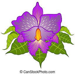 Beautiful orchid. Vector - Beautiful violet orchid. Vector