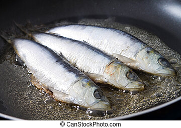 freír, sardina, pez, cacerola
