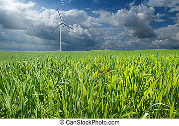 Windenergy - renewable energy