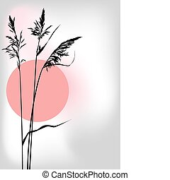 reed at sunset - vector illustration of the reed at sunset