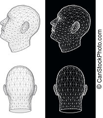 Human head Vector Illustration - Set of two wireframe views...