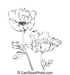 Black and white sketch with flowers