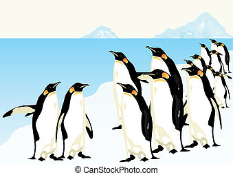 Penguins - Group of penguins standing on an ice floe in the...