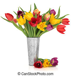 Tulip Flower Beauty - Tulip flowers in rainbow colours in a...