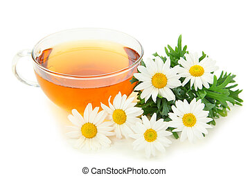 Herbal chamomile tea isolated on white background