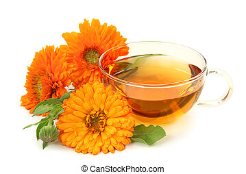 Herbal calendula tea isolated on white background