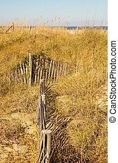 Fence Through Dunes and Sea Oats - A wood slat fence in sand...