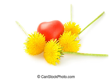 Flowers and heart isolated on white