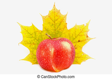 Apple and a leaf