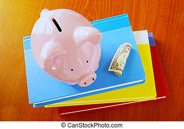 piggy bank on book stack, with dollar