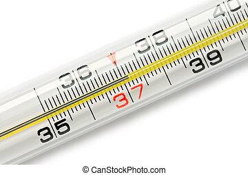termômetro, isolado, branca, fundo