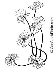 poppies - vector illustration of the poppies in black and...