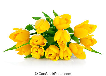 黃色, 郁金香, 花, 花束