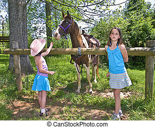 Two Girls and a Horse