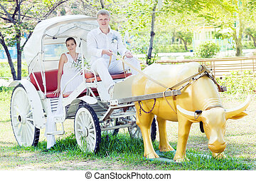 Bride and groom - Groom as a coachman cart his bride