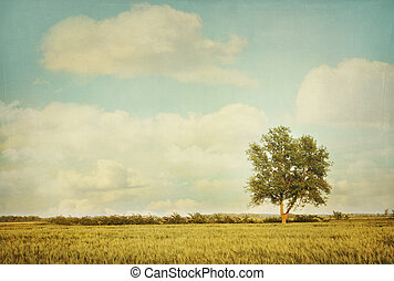 Lonely tree in meadow with vintage look