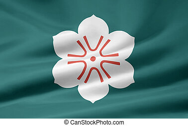Flag of Saga - Japan - High resolution flag of the japanese...