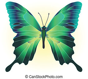 beautiful green butterfly - Vector illustration of beautiful...