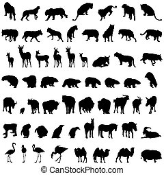animal set - Big collection of different animal silhouettes