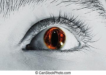 macho, ojo, Color, lente, efecto, serpiente, ojos