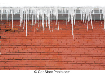 Long Icicles Hanging from Roof down - A wintry scene of long...