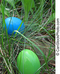 Easter Egg Hunt - Two Easter Eggs hidden in the grass during...