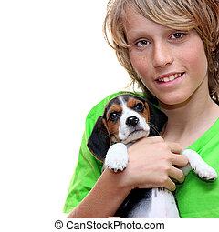 Animal estimação, criança, cão, beagle, segurando, Filhote...