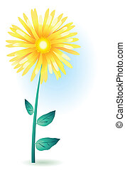 a yellow gerbera - Vector illustration of a yellow gerbera